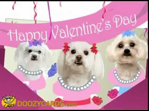 Singing Valentines Day Malties YouTube – Singing Valentine Cards