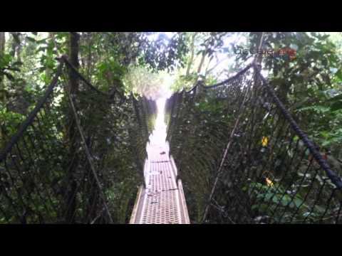 Africa Explored: Obudu Mountain Resort