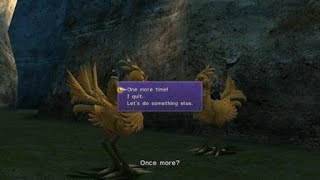 FINAL FANTASY X/X-2 HD Remaster Acquiring SUN SIGIL (Tidus) Chocobo Trainer Race
