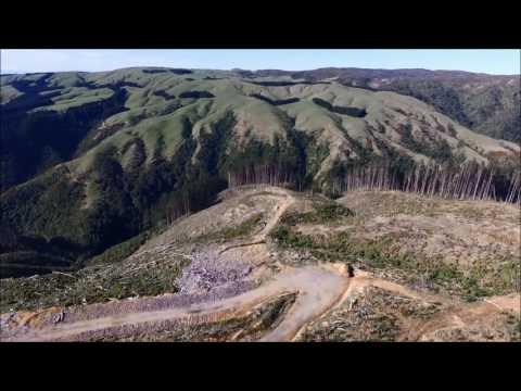 Arapuke Forest New Zealand (K Loop) FLY OVER