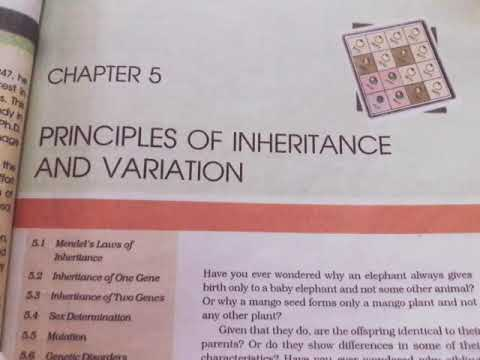 Chapter 5 Principles of Inheritance and Variations class 12th ( NCERT READING ) thumbnail