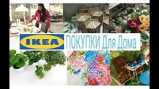 Шоппинг влог Икеа Покупки для Дома
