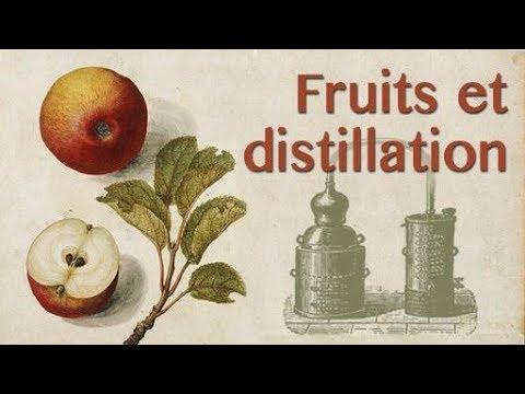 Distiller Des Fruits : Conseils Pour La Poire