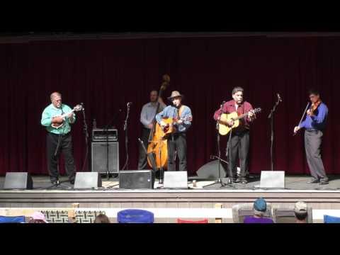 Bild: Das Internationale Online Bluegrass Festival im Internet