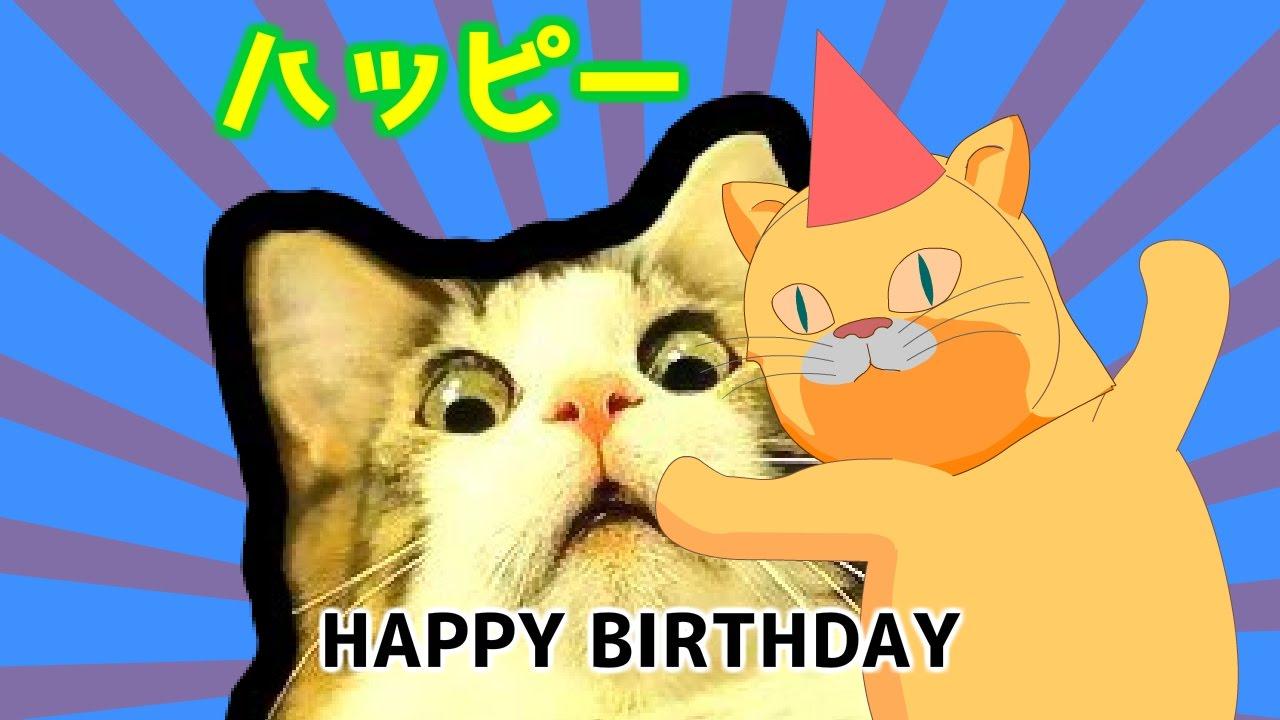 Happy Birthday Haiku Ft Crazy Japanese Piano Cat Weird Japanese