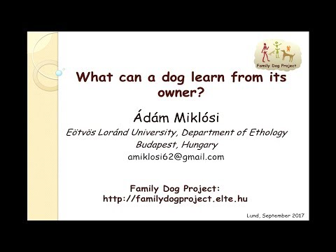 Ádám Miklósi - What can a dog learn from its owner?