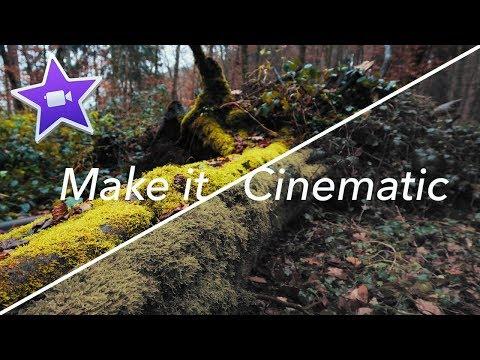 CINEMATIC FILM LOOK