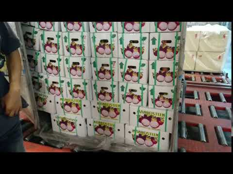 EXPORTING MANGOSTEEN BY AIR FREIGHT 5 TONS