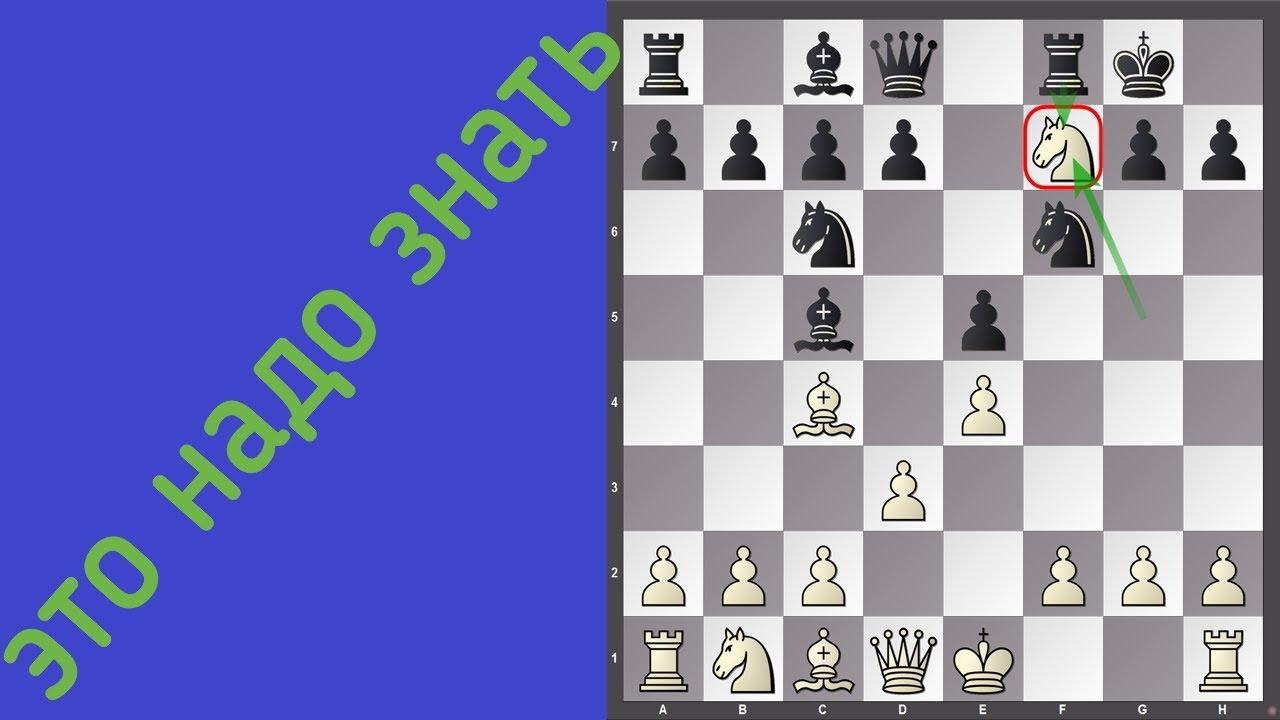 ЭТО НАДО ЗНАТЬ! Итальянская партия. Типичная ошибка белых.  Шахматы для начинающих.