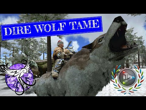 TAMING OUR FIRST DIRE WOLF | Nomadic Survival EP31 | ARK Survival Evolved Mobile