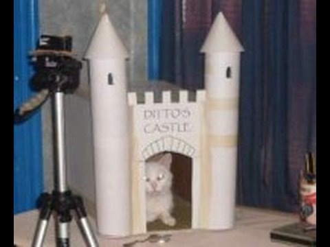 Make a castle for your cat youtube for Castle cat tower