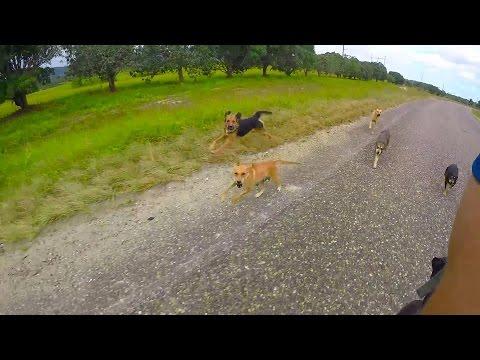 Bikepacking Belize - Sid