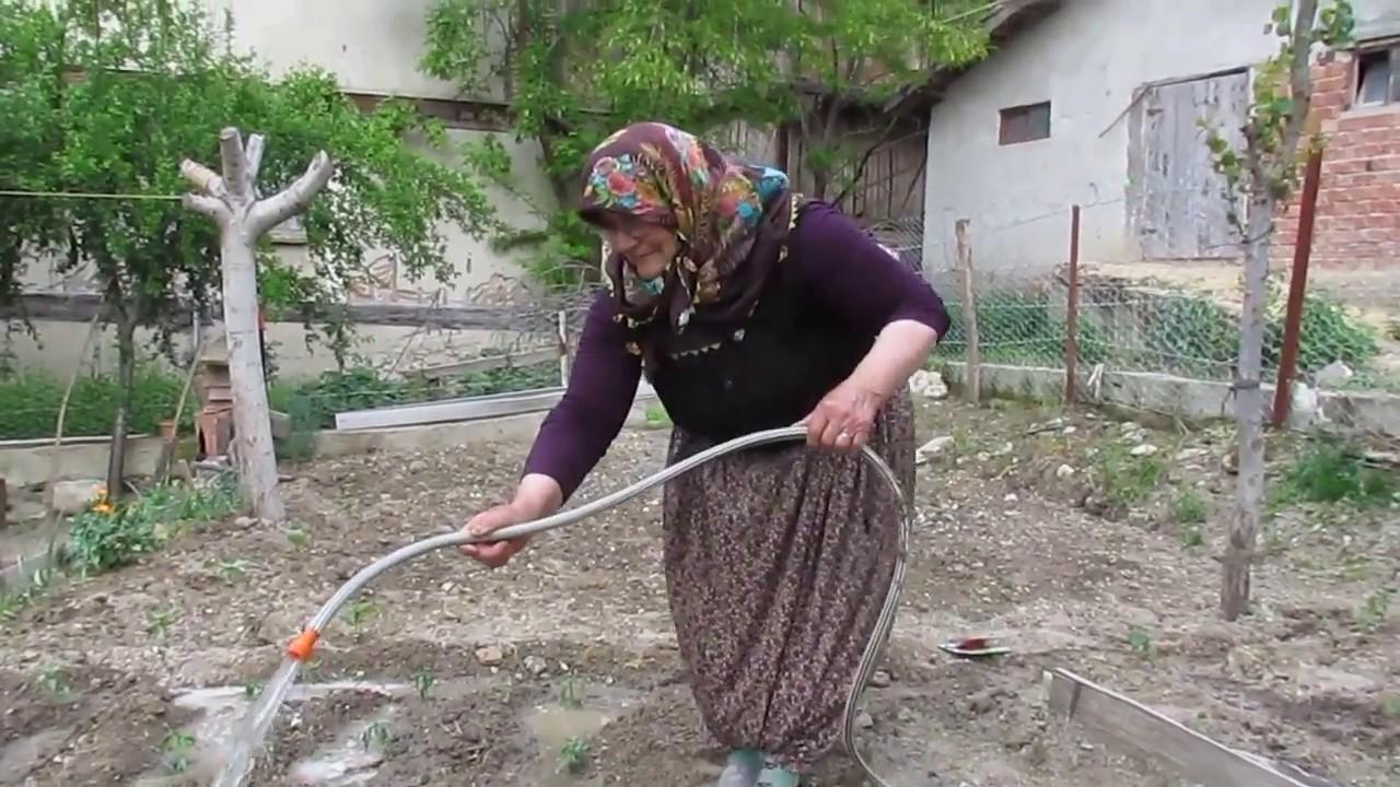 Bağ bahçe işleri sebze fidesi ve tohumu nasıl dikilir