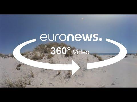 Los humedales de Europa se desertifican
