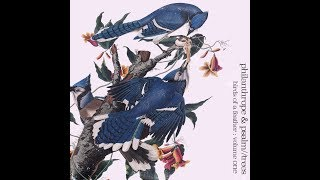 Philanthrope & Psalm Trees - Birds Of A Feather [Full BeatTape]