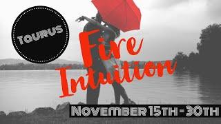 TAURUS - New Love! Apologies! Offers! Success! Yasssss! November 15th-30th