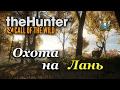 theHunter: Call of the Wild ► Охота на Лань