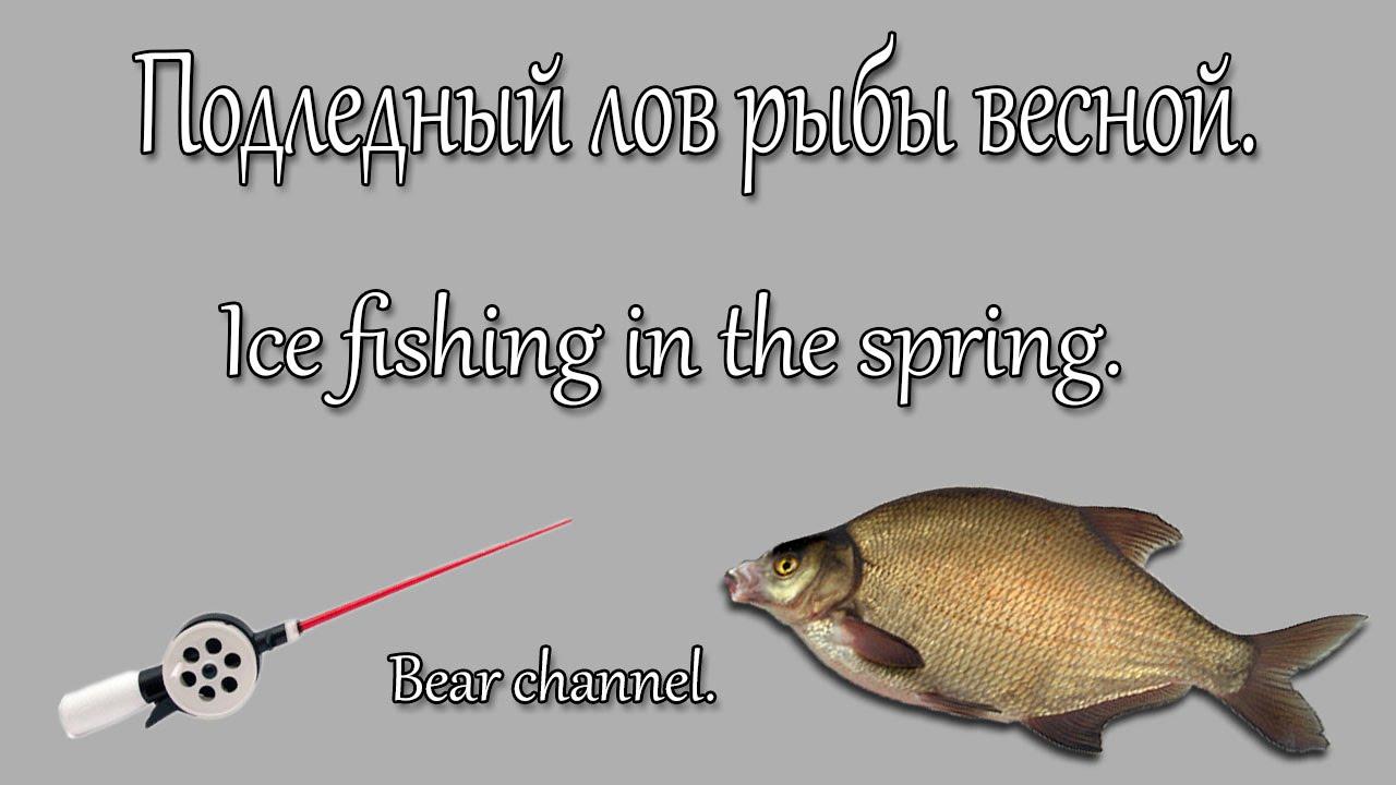 рыбалка как приготовить манку для ловли плотвы