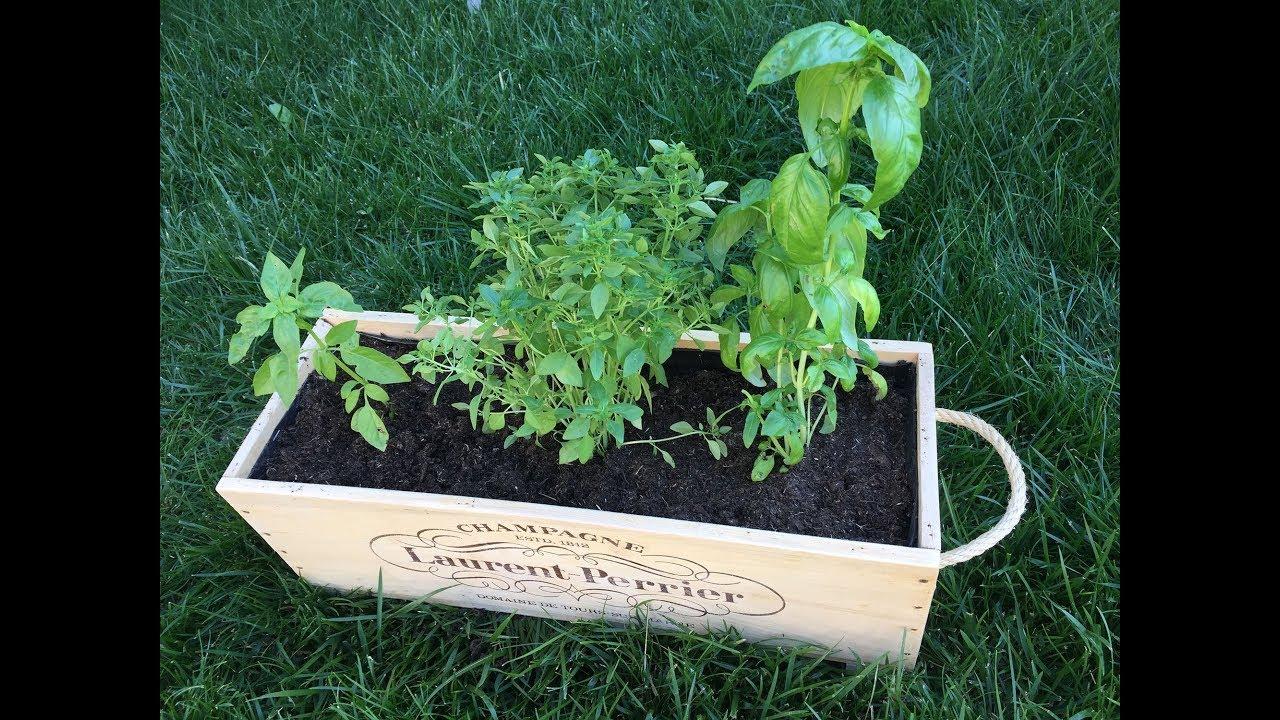 Planter Dans Une Caisse En Bois diy jardinière caisse de vin