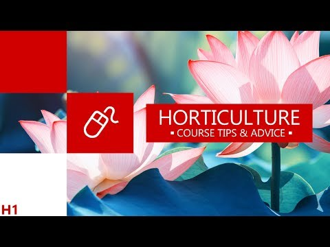 Top 4 Websites For Horticulture Students   Academy For Distance Learning