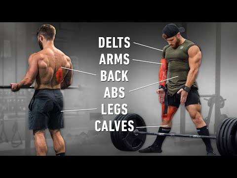 What My New Strength + Size Workouts Look Like (Exact Sets, Reps & Exercises)