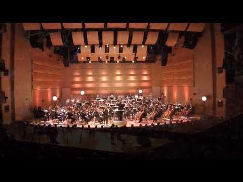 """Autumn Serenade"" - Piece for Diatonic Harmonica & Symphony Orchestra"