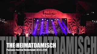 The Heimatdamisch: Video killed the Radio Star