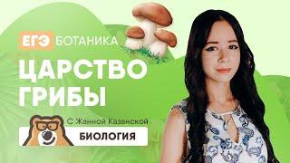 Царство грибы   Биология ЕГЭ 2020   УМСКУЛ