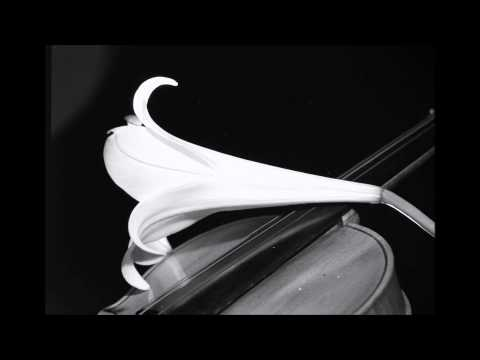 POPCORNOLDIES - FAUSTO LEALI -  PORTAMI TANTE ROSE