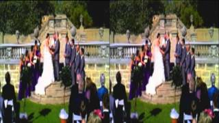 Hayley & Phil Brown 3D Wedding clip