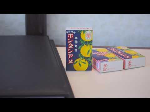 指宿ロイヤルホテル 705室  スライダー撮影