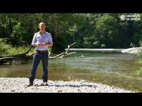 MOOC n°2 - Ecosystem Services: A Method for Sustainable Development