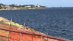 Red Tide in Corpus Christi Bay October 2015