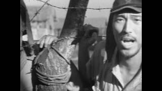 The Burmese Harp ビルマの竪琴 (1956) HD trailer