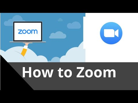 How To Use Zoom - Basics In Less Than 5 Minutes