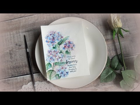 Watercolor Hydrangea with Hero Arts Liquid Watercolors I Craft Chat on Cameras and Photography