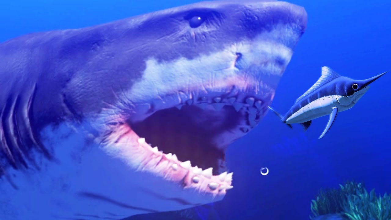 New Great White Shark Level 200 Feed And Grow Fish