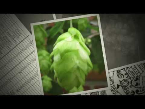 GroeneBel bier gebrouwen door Belleketels