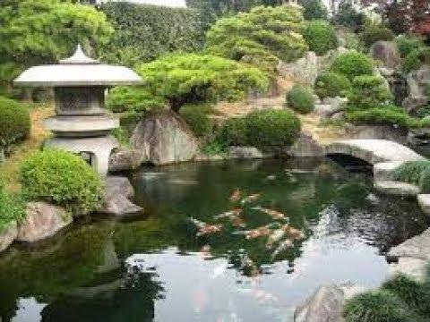 Kombinasi Kolam Dan Taman Ala Jepang