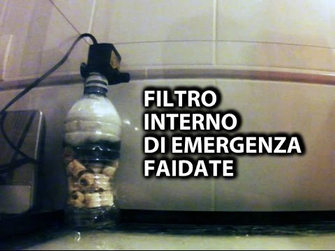 Rapido filtro interno fai da te youtube for Filtro esterno laghetto fai da te