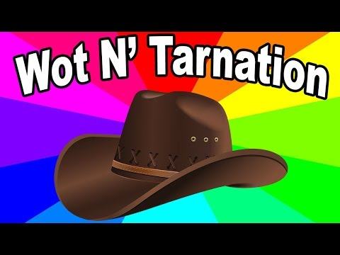 What does what in tarnation mean? The origin of the southern influenced what in   memes