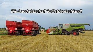 Die Landwirtschaft in Ostdeutschland!