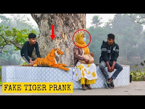 Fake Tiger Prank
