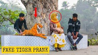 Fake Tiger Prank 😂 on Cute Girl | Fake Tiger vs Man Prank Video (Part 10) | 4 Minute Fun