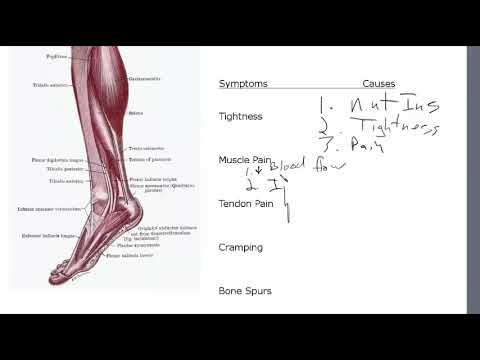 Achilles Tendonitis Symptoms Have Specific Causes