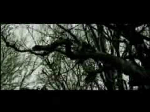 50 cent feat akon eminem ill still will kill music video
