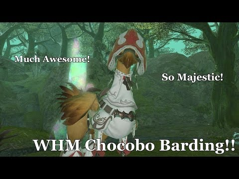 WHM Chocobo Barding!!!! & the Fastest Way to Level it to Rank 10