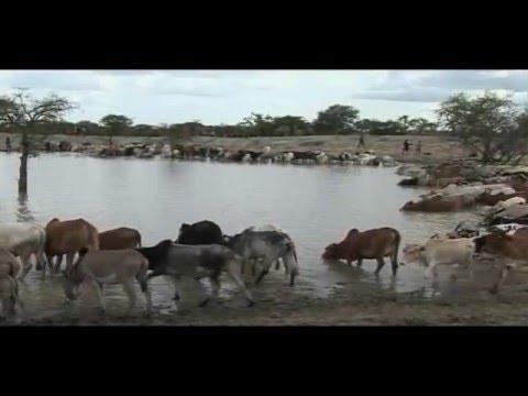 LAND SUBDIVISION IN KENYA