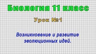 Биология 11 класс (Урок№1 - Возникновение и развитие эволюционных идей.)