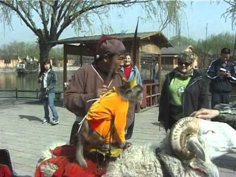 kaifeng ses Juifs Chinois et la ville